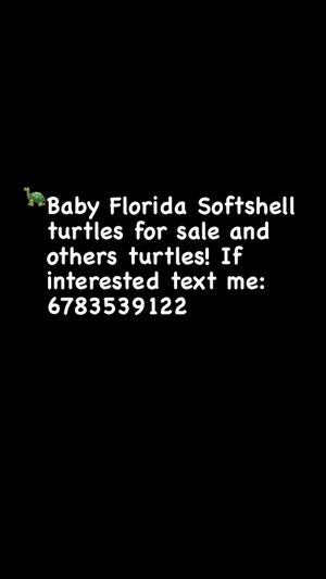 Read picture. If interested text me! for Sale in Atlanta, GA