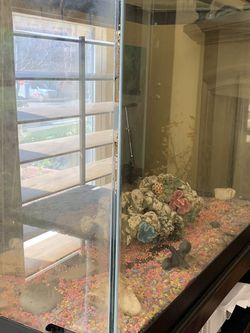 55 Gallon Fish Tank With Boohkshelf And Storage Cabinet for Sale in Fremont,  CA