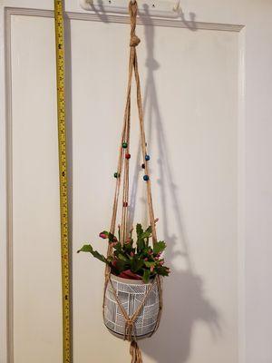 Plant hanger for Sale in Oakland, CA