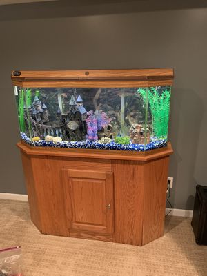 Fish Tank 65 Gallon for Sale in Town and Country, MO