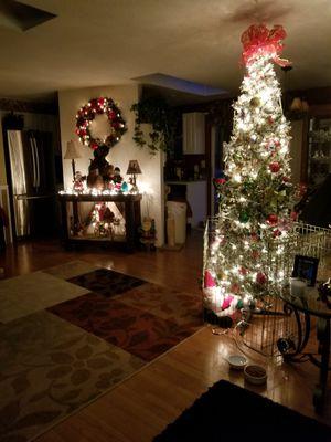 Christmas tree for Sale in Stanwood, WA