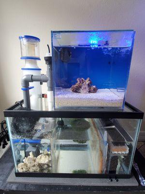 Aquarium for Sale in Kissimmee, FL