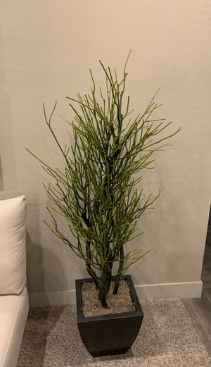 Artificial Plant 5ft 3 in for Sale in Las Vegas, NV