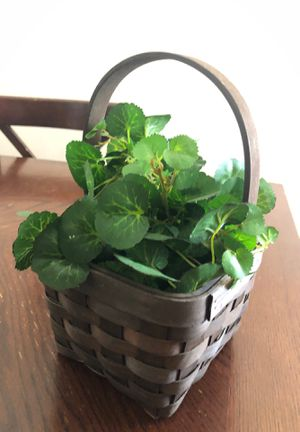 Small Plant & Basket for Sale in Henderson, NV