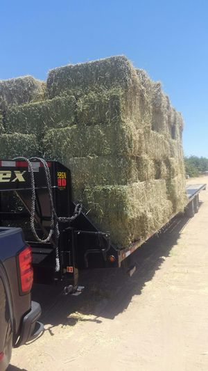 Alfalfa hay for Sale in Jurupa Valley, CA