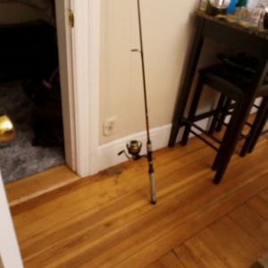 I. Got A Peen Battle 3500 And I Got A 6 Ft6. Peen Rod for Sale in Providence, RI