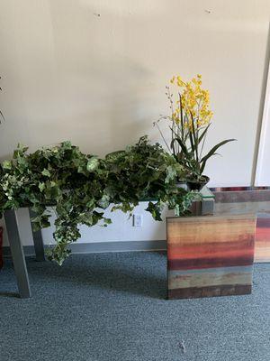 Fake plants and decor $10 ea for Sale in Corona, CA