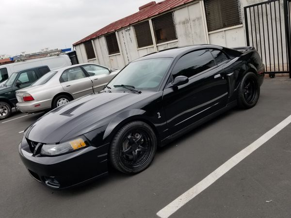 Terminator Mustang Cobra For Sale