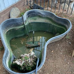 Pond with pump and filter for Sale in Sacramento, CA