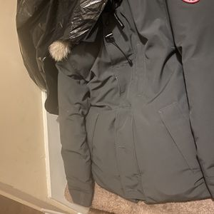 Canada Goose for Sale in Fort Washington, MD