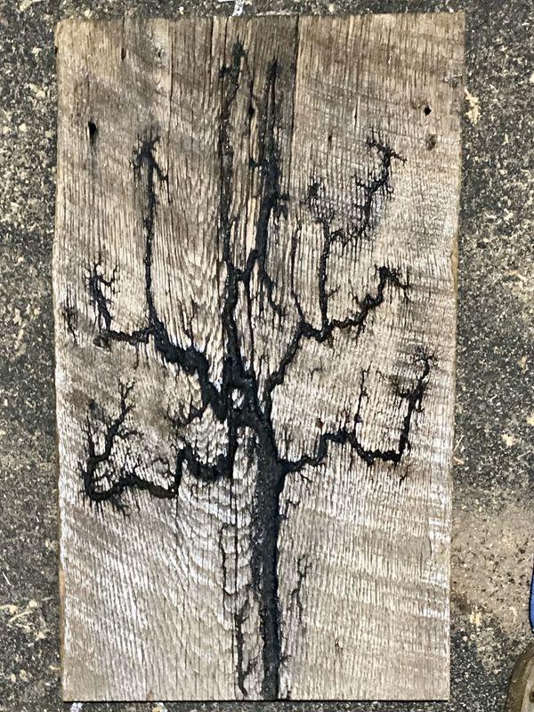 Lichtenberg wood burnings.