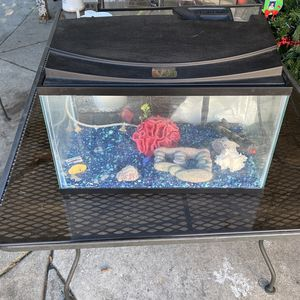 10 Gallon Fish Tank With Heater, Bubbler, Filter And Lights for Sale in San Dimas, CA