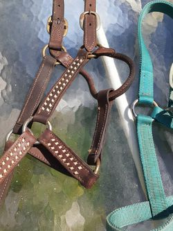Horse Halters One Leather, One Nylon for Sale in The Villages,  FL