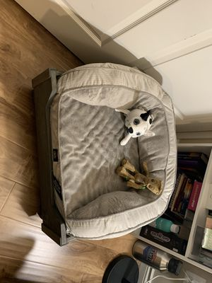 Dog bed for Sale in Corona, CA