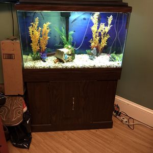 40 Gallon Fish Tank Everything Included for Sale in Stafford Township, NJ