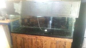 180 gallon tank for Sale in Darien, IL