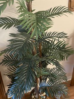 Nearly Natural Indoor Palm Plant for Sale in Pompano Beach,  FL
