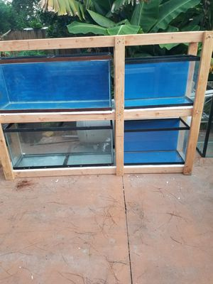 2-55gal 2-30gal aquariums including the wood stad $500 for Sale in Fort Lauderdale, FL