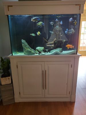 Beautiful 160 gallon tall fish tank for Sale in Brentwood, NC
