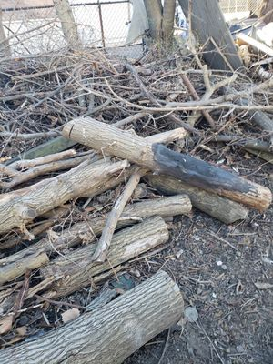 Fire wood free for Sale in Cleveland, OH