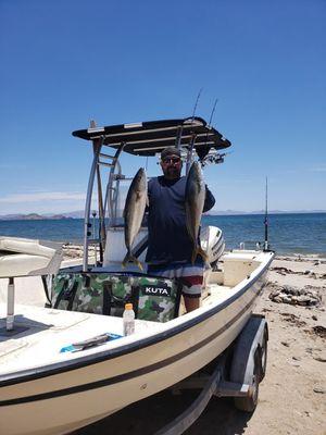 KUTA Coolers insulated fish kill bags for Sale in Kihei, HI