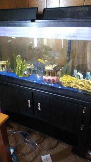 Fish tank for Sale in Hyattsville, MD