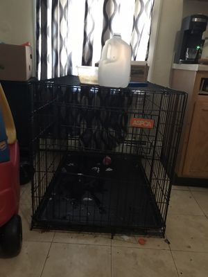 Xxl dog cage and crate 54 inch for Sale in North Smithfield, RI