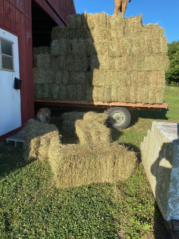 Hay / Square Bales