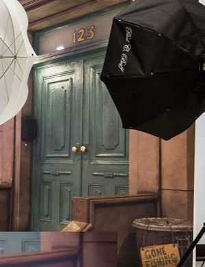 Sesame Street Backdrop for Sale in Waterloo, IA