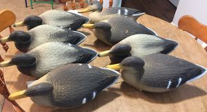 Duck decoys for Sale in Fort Worth, TX