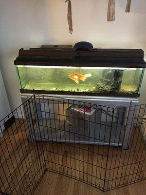 Fish tank 50 gallons furniture and fish not included for Sale in Stafford, VA