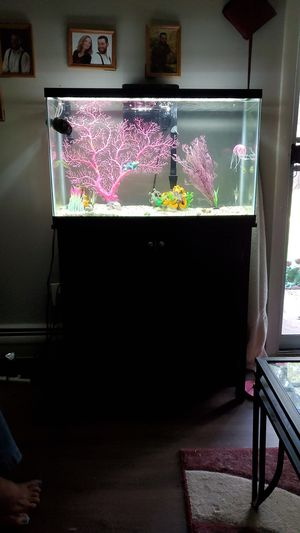 29 gallon tank and cherry stand for Sale in Highland, IN