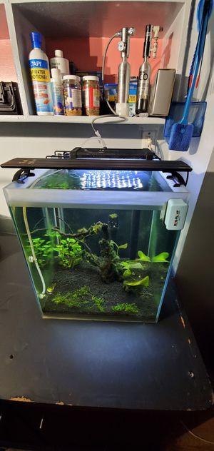 15 gallon glass aquarium for Sale in Daly City, CA