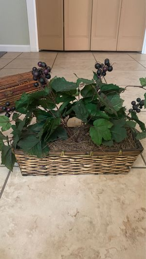 Artificial Grapevine Plant for Sale in Fresno, CA
