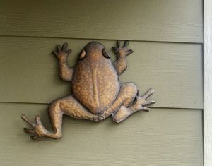 Decorative Frog Wall Decor for Sale in Littleton, CO