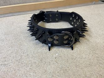 Spiked Dog Collar  for Sale in The Bronx, NY