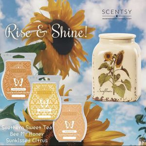 Scentsy warmer for Sale in White House, TN