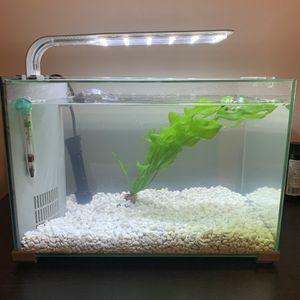 Topfin Retreat 5 Gallon Aquarium for Sale in Cambridge, MA