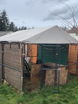 Dog Kennel for Sale in Graham,  WA