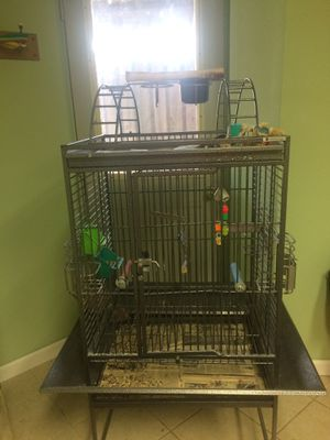 Bird Cage for Sale in Cincinnati, OH