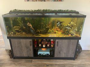 Aquarium 150 Gallon Fish Tank for Sale in Bakersfield, CA