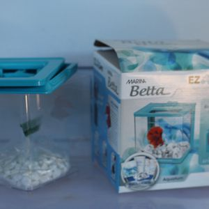 Beta Fish Tank for Sale in Tampa, FL