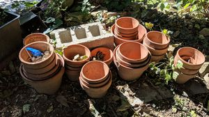 Clay flower pots for Sale in Staten Island, NY