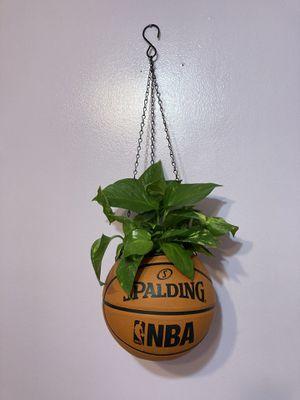 Basketball hanging planter basket for Sale in Norwalk, CA