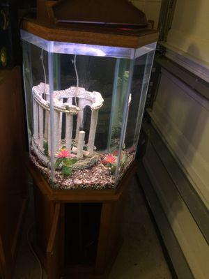 30 gallon fish tank for Sale in Orlando, FL