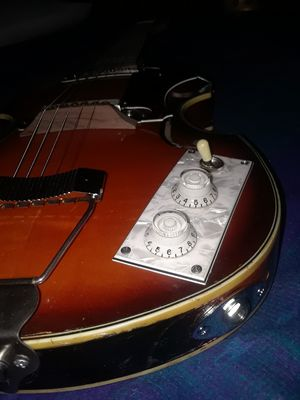 , Hoffner viola six string limited edition very rare for Sale in Denver, CO