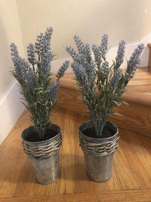 Fake lavender plants for Sale in San Jose, CA