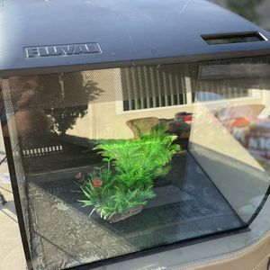 Fish Tank Fluval Flex 15gallon Glass for Sale in Lake Forest, CA