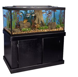 75 gallon aquarium & stand for sale for Sale in Daly City, CA