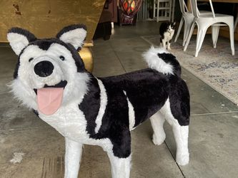 Life Size Stuffed Siberian Husky Dog for Sale in Los Angeles,  CA